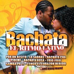Salsaloco De Cuba 歌手頭像
