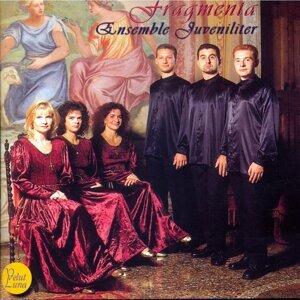 Ensemble Juveniliter 歌手頭像
