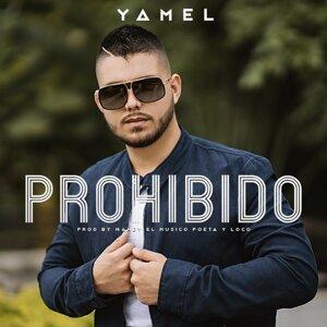 Yamel 歌手頭像