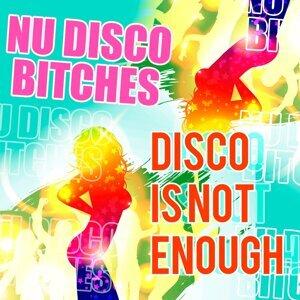 Nu Disco Bitches 歌手頭像
