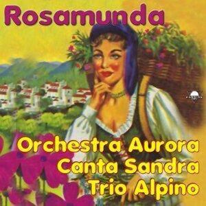 Sandra, Trio Alpino, Orchestra Aurora 歌手頭像