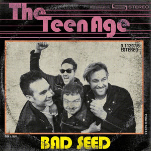 The Teen Age 歌手頭像