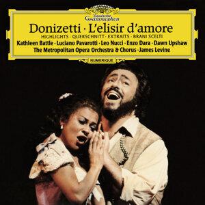 Kathleen Battle,Metropolitan Opera Chorus,Leo Nucci,Enzo Dara,Luciano Pavarotti,James Levine,Metropolitan Opera Orchestra,Dawn Upshaw 歌手頭像