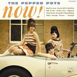 THE PEPPER POTS 歌手頭像