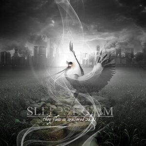 Sleepstream 歌手頭像