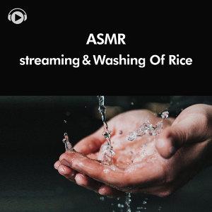 ASMR by ABC, ALL BGM CHANNEL アーティスト写真