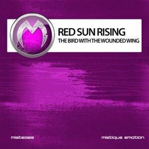 Red Sun Rising 歌手頭像
