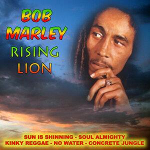 Bob Marley アーティスト写真