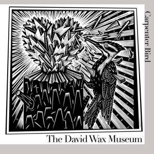 The David Wax Museum 歌手頭像
