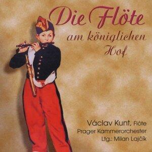 Vaclav Kunt, Prague Chamber Orchestra, Ales Barta, Pavel Belousek 歌手頭像