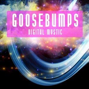 Goosebumps 歌手頭像