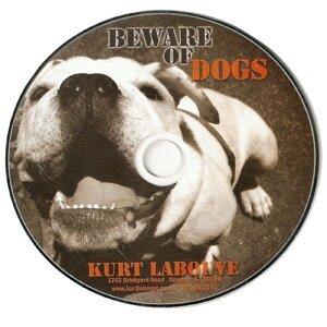 Kurt Labouve 歌手頭像