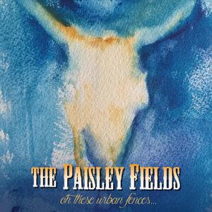 The Paisley Fields 歌手頭像
