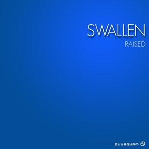 Swallen 歌手頭像