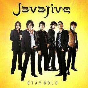 Javajive 歌手頭像