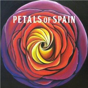 Petals of Spain 歌手頭像