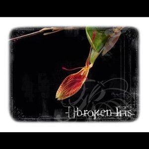 Broken Iris