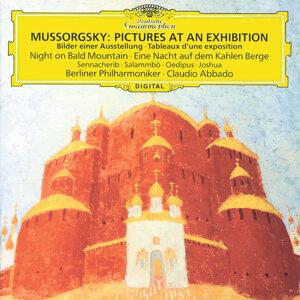 Berliner Philharmoniker,Prague Philharmonic Chorus,Claudio Abbado,Elena Zaremba,Pavel Kühn 歌手頭像