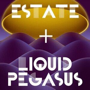 Liquid Pegasus 歌手頭像