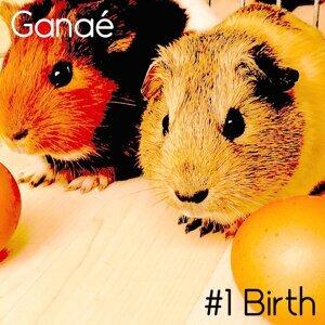 Ganae 歌手頭像