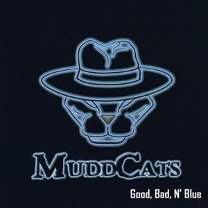 MuddCats 歌手頭像