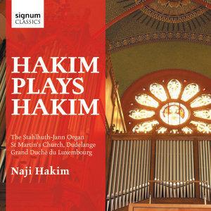 Naji Hakim 歌手頭像