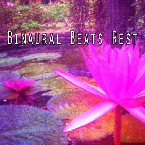 Binaural Beats Brain Waves Isochronic Tones Brain Wave Entrainment