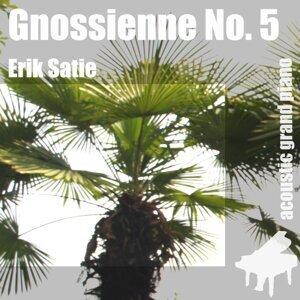 Gnossienne No. 5 , 5. , 5th [ Erik Satie ] 歌手頭像