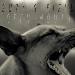 Suzy's Field 歌手頭像