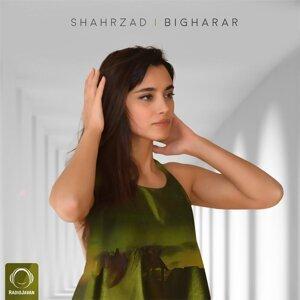 Shahrzad 歌手頭像