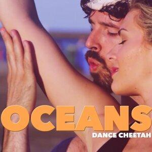 Dance Cheetah 歌手頭像