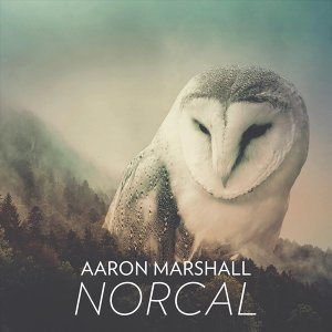 Aaron Marshall