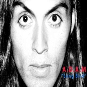 A.D.a.M. 歌手頭像