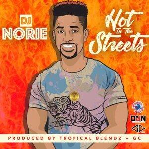 DJ Norie 歌手頭像