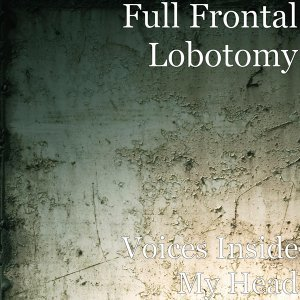 Full Frontal Lobotomy 歌手頭像