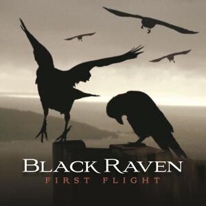 Black Raven 歌手頭像