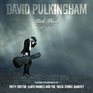 David Pulkingham 歌手頭像