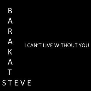 Steve Barakatt 歌手頭像