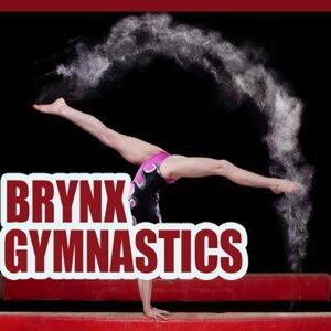 Brynx 歌手頭像