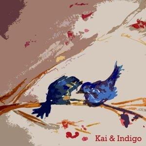 Kai & Indigo 歌手頭像