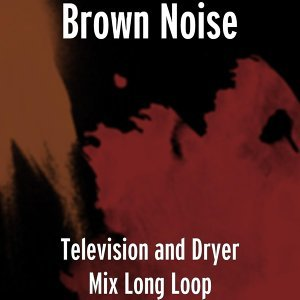 Brown Noise 歌手頭像