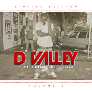 D Valley 歌手頭像