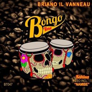 Briano Il Vanneau 歌手頭像