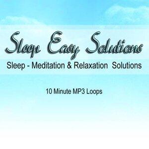 Sleep Aid App Relaxing Ocean Waves Loop 歌手頭像