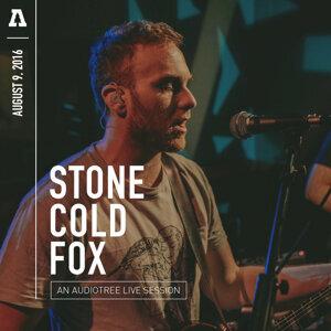 Stone Cold Fox 歌手頭像