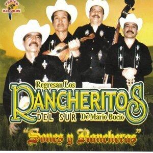 Los Rancheritos Del Sur 歌手頭像