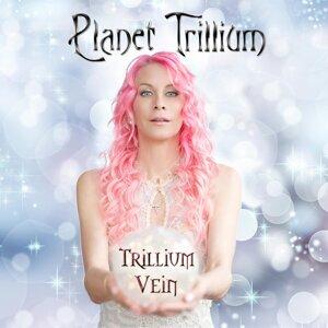 Trillium Vein 歌手頭像