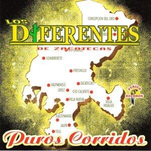 Los Diferentes De Zacatecas 歌手頭像