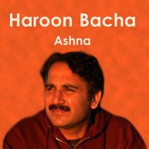 Haroon Bacha 歌手頭像