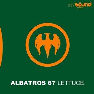 Albatros 67